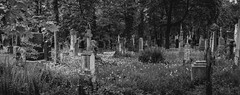 so much history (pascal_fontain) Tags: friedhof monochrome graveyard munich mnchen graves silence grab stille sdfriedhof