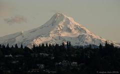 Mount Hood Up Close (Noble Silence) Tags: usa oregon mounthood