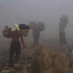 Sulfur miners at Mt. Ijen Vulcano. Wanna trade jobs? #java #indonesia #ttot ------------------------------------------- #bbctravel #lonelyplanet #tripadvisor #globetrotter #rgphoto #backpacking #traveler #instagood #traveling #instago #worldtravelbook #be (christravelblog) Tags: me beautiful indonesia photography for java do mt photos jobs feel free visit follow wanderlust more backpacking credit website them but contact lonelyplanet traveling sulfur stories trade share wanna vulcano miners traveler globetrotter tripadvisor cooperate ijen ttot reisblogger travelgram bestintravel rgphoto instagood bbctravel instago travelingram igtravel igworldclub instapassport instatravel passionpassport travelstoke wwwchristravelblogcom worldtravelbook