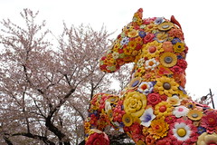 DSCF1548 (chinnian) Tags: japan aomori  fujifilm x70  towada flowerhorse  jeonghwachoi towadaartcenter  fujifilmx70