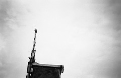Lookout (DanRSmith) Tags: blackandwhite bw monochrome seagull hastings minimalism rodinal simple fishingboat oldtown stade fomapan100 olympusmju1