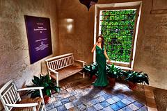 The lady of the castle (Marco Trov) Tags: park street italy parco castle strada italia cuneo manta hdr castellodellamanta canong1x marcotrov