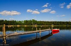 Let the Finnish summer begin! (- Man from the North -) Tags: summer sky reflection water clouds forest finland boat nikon jetty sunny wideangle bluesky summertime westcoast terhi ostrobothnia samyang summerhouses greetingsfromfinland nikond7000 samyang14mmf28