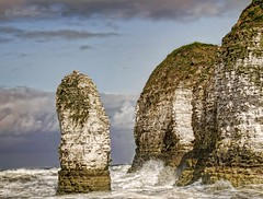 Selwicks Bay Stack (Ian Gedge) Tags: uk sea england english beach bay coast chalk waves britain head cove yorkshire cliffs stack headland flamborough selwicks