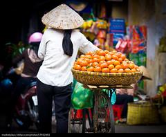 x-default (quetoi17) Tags: vietnamese vietnam hoian hanoi dalat saigon mekong cantho hochiminh phuquoc hatay quangngai nhatrang haiphong phanthiet sonla binhduong dalt quinhon hagiang condao yenbai thaibinh tiengiang thainguyen baccan dongvan binhdinh mocchau lungcu hungyen fanxiphang mucangchai meovat