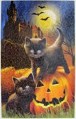 Did we Scare You? (Tom Wood) (Leonisha) Tags: halloween cat pumpkin chat kittens puzzle katze jigsawpuzzle krbis ktzchen
