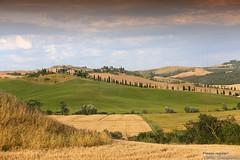 20160704_crete_senesi_siena_tuscany_66fg67 (isogood) Tags: italy landscapes horizon country scenic tuscany crete siena cretesenesi asciano senesi