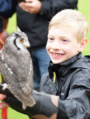 Meeting an Owl - Fir Tree Falconry
