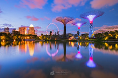 Gardens by the Bay (Ram Suson Photography) Tags: sunset gardens sunrise singapore gardensbythebay supertrees