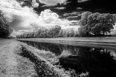 Weie Elster - Leipzig (inmyeyespictures) Tags: canon leipzig infrared fluss bume spiegelung weise infrarot elster eosm