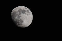 Moon (@lbyper) Tags: nikon d3 tc14x sigma150600