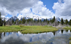 GTY_0575 (Kerri M.) Tags: wyoming grandtetonnationalpark schwabacherlanding nationalparks tetons tetonrange grandteton landscape mountain