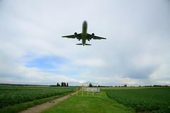 CS-TRN (DST_2493) (larry_antwerp) Tags: cstrn boeing 767 76733a euroatlantic steenokkerzeel belgium belgi          aircraft vliegtuig veld field