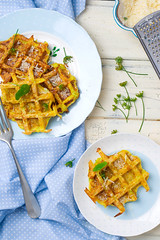 marrow wafers with parmesan (Zoryanchik) Tags: food cooking pancakes dinner recipe lunch cuisine golden dish background plate vegetable crispy snack meal onion pancake parsley fried waffle marrow patties fritters prepared