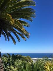#barcelona (wanda.w) Tags: barcelona blue sea espaa green palms mar spain meer palmeras meri catalan spanien palmen katalonien hispaania