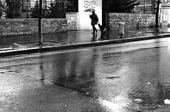 Under 36 (pascalcolin1) Tags: blackandwhite reflection rain umbrella noiretblanc pluie reflets streetview parapluie paris13 photoderue urbanarte photopascalcolin