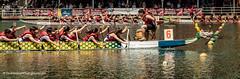 One more! (Paul Henman) Tags: toronto ontario canada photowalk torontoislands 2016 torontointernationaldragonboatracefestival topw paulhenman torontophotowalks httppaulhenmanphotographycom topwdbrf16