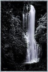 Wailua Falls ,Maui (al_great1) Tags: wailuafalls mauihawaii
