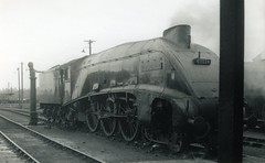 img793 (OldRailPics) Tags: steam aberdeen kingfisher british locomotive railways ferryhill 61b 60024