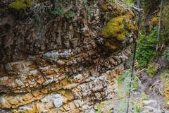 MH5_9237 (memories by Mark) Tags: rockies alberta banff rockymountains banffnationalpark johnstoncanyon