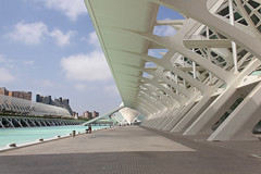 Valencia - City of Arts and Sciences 54 (Romeodesign) Tags: street santiago water valencia lines museum architecture modern spain opera perspective center structure calatrava pillars ciudaddelasartesylasciencias lhemisfric lumbracle flixcandela cityofartsandsciences 550d elmuseudelescinciesprncipefelipe elpalaudelesartsreinasofa