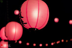 Symbol of the Festival of Japan (Masahiko Futami) Tags: pink history festival japan night canon photo asia shoot photographer culture photograph 日本 lantern eos5dmarkiii