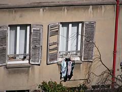 2010-03 Laundry day in Paris (caroles_corner) Tags: paris window europe neighborhood laundry shutters