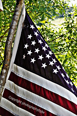 American Flag Old Glory (Photographybyjw) Tags: old blue red usa white tree america us bill high branch glory flag north first american rights carolina second constitution waving amendments photographybyjw