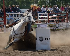DSC_9191 (labels_30) Tags: horse barrel rodeo cowgirl stampede barrelracing barrelracer