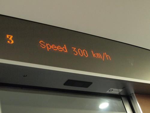 P5015563