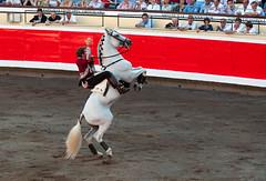 Rejoneo7 (Ferchu65) Tags: espaa naturaleza caballos europa bilbao lugares evento famosos euskadi espectculos rejoneo temas rejoneadores protagonista animalesdomsticos pablohermosodemendoza arteculturayespectaculos plazadetorosdevistaalegre corridaderejonesferadebilbao2013