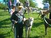 WebbMemorialPark09-11-2011007