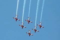 RAAF Roulettes Aerobatic Team (Robert Frola Aviation Photographer) Tags: nikond70 pilatus 2008 raaf a23 pilatuspc9 yamb raafroulettes aerobaticaircraft defenceforceairshow2008