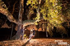 De charlas (Jos Luis Lozano http://joselu.patalata.net/blog/) Tags: longexposure light lightpainting luz night contraluz noche three foto led torch lumiere rbol nocturna luis silueta nuit arbre jos nocturne lozano fotografa linterna iluminacin largaexposicin longue lenser noctambulos