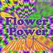 19-Flowerpower