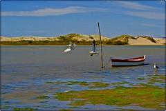 Nancimm7 (Nancimm7) Tags: rio brasil barcos santacatarina guardadoemba indaial riodamadre nancimm7