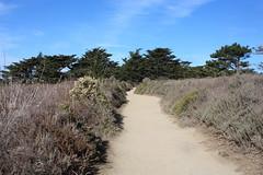 Point Lobos State Reserve (Ray Bouknight) Tags: california coast hiking january trail carmel montereycounty centralcoast 2014 pointlobosstatereserve