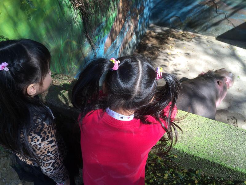 20140119 恩綺一起去看動物