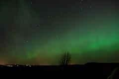 27-2-2014 (Copperhobnob) Tags: aberdeenshire explore aurora