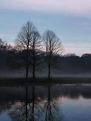 Into the sweet morning fog (Paul Beentjes) Tags: morning trees mist reflection netherlands fog sunrise lumix dawn nevel bomen estate nederland panasonic f28 dmc ochtend 1223 reflectie vario overveen landgoed elswout zonsopkomst gh3 1235mm