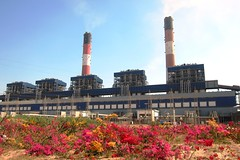 Thermal Power plant (Yazed Lord) Tags: flowers blue red chimney sky power bougainvillea thermal chimneys units cgpl umpp