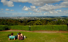 Overlooking Brisbane, at Mt Coot tha (www.jamespartridge.photo) Tags: trees green water forest woods australia brisbane qld isolation mtcootha