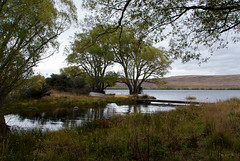 trees newzealand lake water reflections boat nz southisland lakealexandrina whakatukumoana