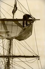 Tall Ships 1 (_TC Photography_) Tags: ship ropes tallships rigging
