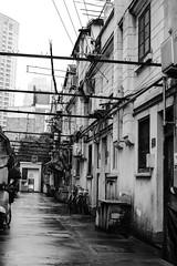DSC_0066 (tamas.doczi) Tags: china nikon shanghai jingan 中国 上海 d3200 静安区