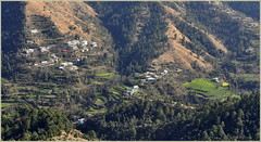 The Valley (mala singh) Tags: india mountains shimla villages valley himalayas