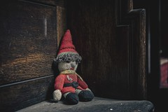Lost to be found..... (Taken-By-Me) Tags: door uk urban news building abandoned neglect buildings court dark toy lost gnome chair nikon closed teddy time decay empty exploring sheffield centre north ruin corridor cell police eerie dirty gone creepy adventure explore prison elf takenbyme crime pay forgotten vacant law walls courts left convict cells derelict ue urbex magistrates d610