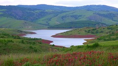 Lago di Montecotugno - Senise (PZ)