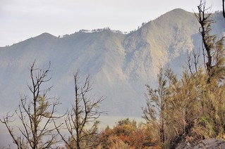 mont bromo - java - indonesie 8