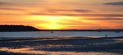 At Sunset (Tilney Gardner) Tags: sunset landscape nikon colours dorset sandbanks poole